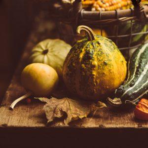 Small pumpkin closeup
